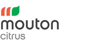 Masimong Portfolio Logo Mouton Citrus